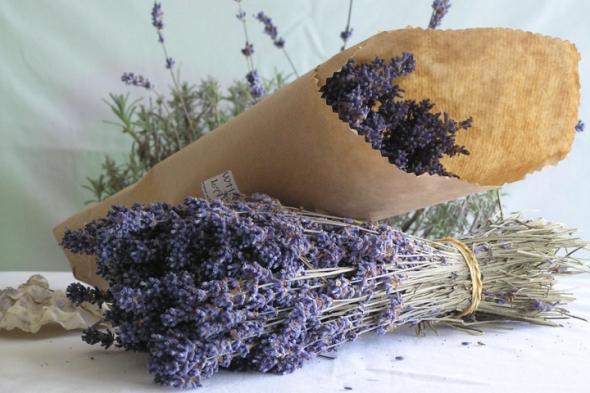 Как выбрать и купить качественные сушеные травы и зелень