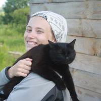 Кошка после переезда в деревню