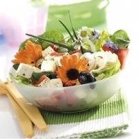Съедобные цветы для салатов
