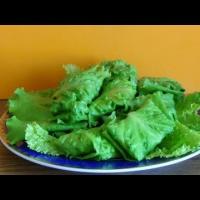Embedded thumbnail for Листья салата с начинкой