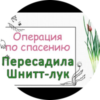 Embedded thumbnail for Пересадка Шнитт-лука  весной